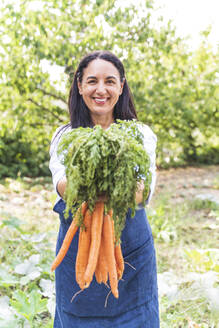 Smiling mature woman holding fresh harvested carrots from vegetable garden - FMOF01185