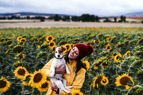 Portrait of young woman standing in sunflower field with pet dog in hands - EBBF00869