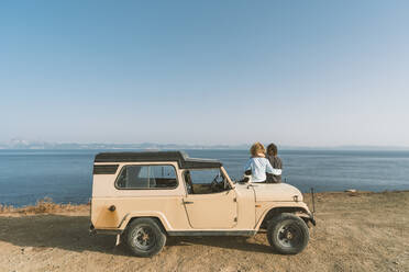 Couple admiring sea view while sitting with dog on car at beach - DAMF00562