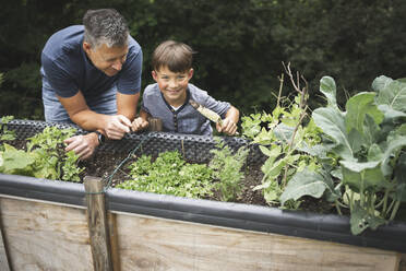 Smiling boy learning gardening from father while leaning on raised bed at garden - HMEF01082