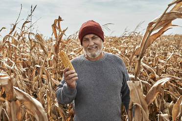 Smiling farmer holding corn while standing at farm - ZEDF03987