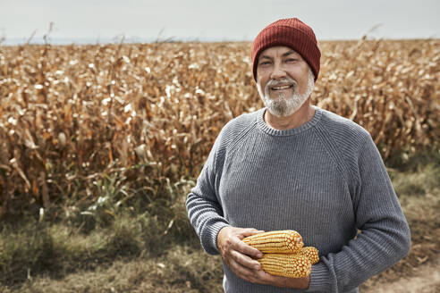Smiling farmer collecting corn while standing at farm - ZEDF03990