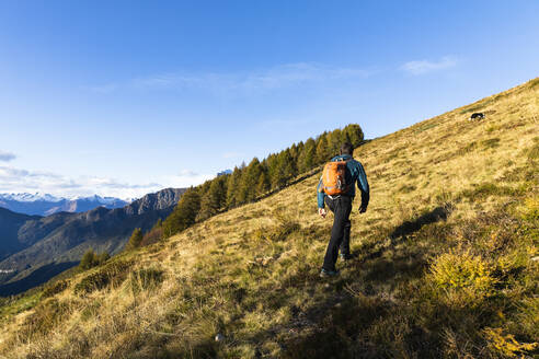 Male hiker moving up on mountain during sunny day - MCVF00627