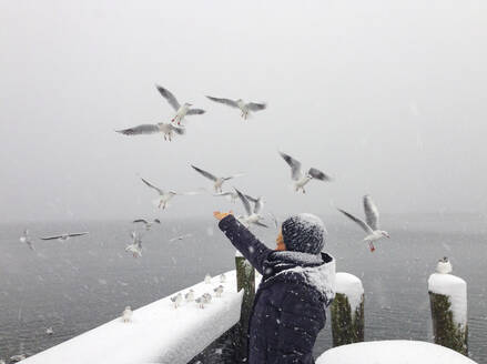 Active senior woman feeding seagulls at Lake Mondsee during winter - WWF05466