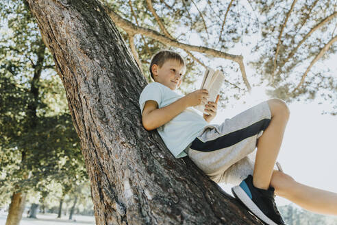 Boy reading book while lying on tree trunk in public park - MFF06398