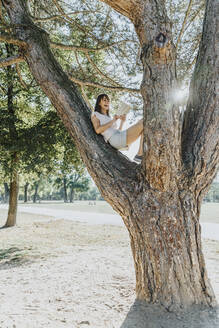 Mature woman reading book while sitting on tree in public park - MFF06401
