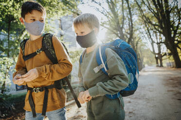 Brothers wearing protective face mask while walking in public park on sunny day - MFF06437