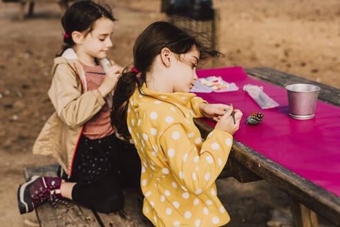 Siblings coloring pine cones at picnic table in park - ERRF04597