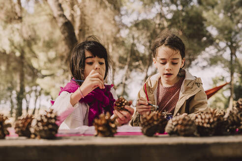 Cute sisters decorating pine cones with watercolor painting at table in park - ERRF04600
