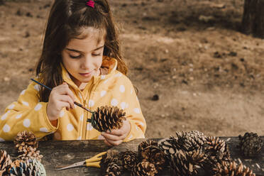Cute girl decorating pine cone while coloring with paintbrush at table in park - ERRF04618