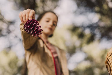 Girl holding pine cone at park - ERRF04630