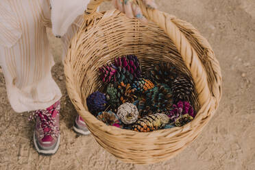 Girl collecting colorful pine cones in wicker basket at park - ERRF04642