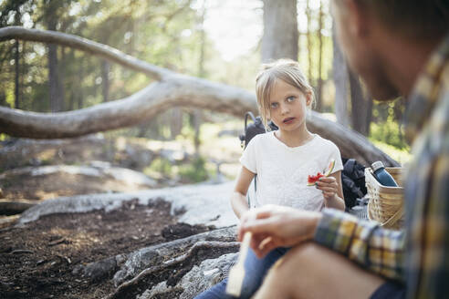 Daughter eating watermelon while looking at father in forest - MASF20174
