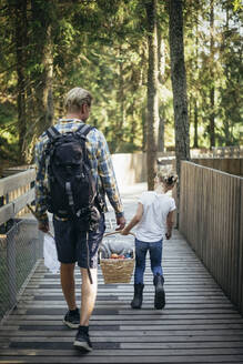 Rear view of father and daughter holding picnic basket while walking on footbridge in forest - MASF20198