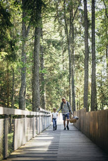 Father talking to daughter while walking on footbridge in forest - MASF20201