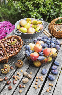Garden table filled with autumn harvest of nuts and fruits - GWF06767