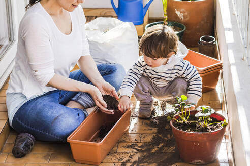 Mother and son planting seed in pot together while sitting at balcony - FLMF00324