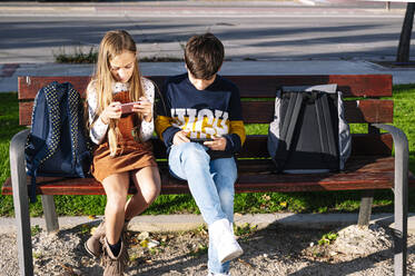 Sibling using smart phone while sitting on bench in public park during sunny day - JCMF01558