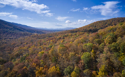 Aerial view of George Washington and Jefferson National Forests in autumn - BCDF00495