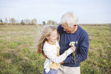Happy grandfather with granddaughter holding chamomile flowers on field - EYAF01381