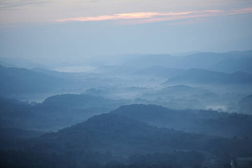 Aerial view of Appalachian forest shrouded in morning fog - BCDF00535