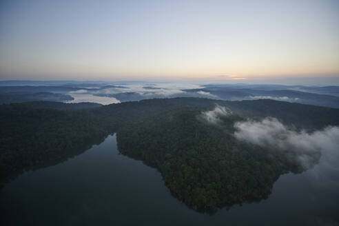 Aerial view of forested lakeshore at foggy dawn - BCDF00538