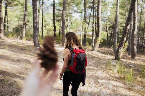 Woman holding pine cone with trekker standing in forest at La Pedriza, Madrid, Spain - MRRF00698