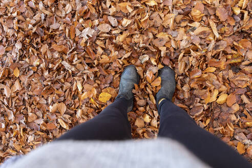 Woman standing on autumn leaves in Cannock Chase woodland - WPEF03687