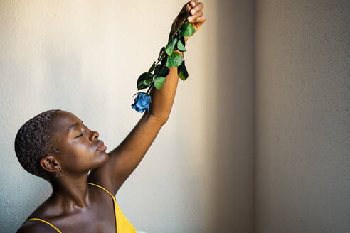Female hipster with eyes closed holding blue rose against wall at home - RCPF00464