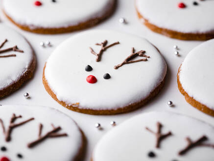 Homemade Christmas cookies with reindeer decoration - FLMF00359