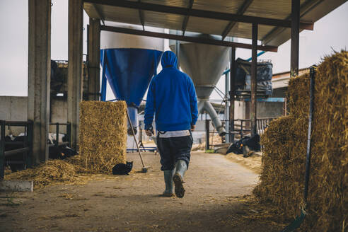Male farmer wearing blue hood walking in stable - ACPF00981