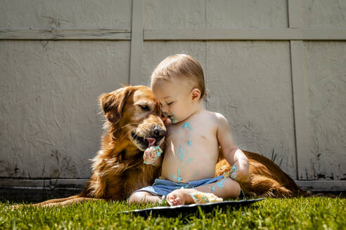 Shirtless baby boy with Golden Retriever eating birthday cake on grassy land in yard - AWAF00012