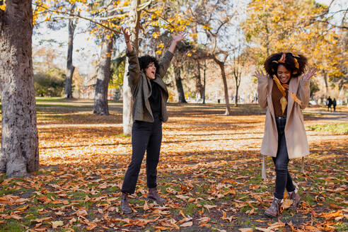 Carefree friends playing with dry leaf while standing at park - MRRF00760