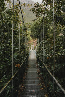 Diminishing perspective of suspension bridge amidst plants in forest - DMGF00427