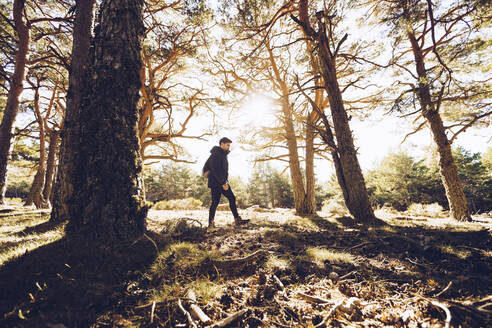 Male hiker walking on land in woodland - RSGF00473