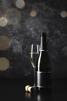 Studio shot of glass and bottle of champagne - FLMF00376