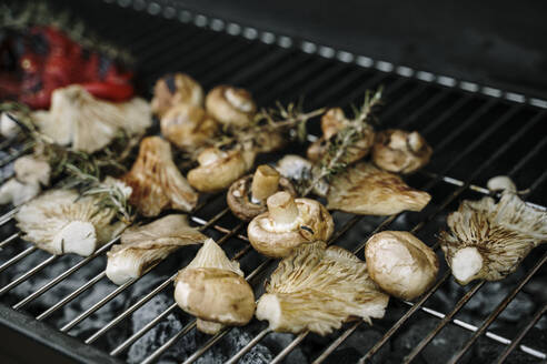 Mushrooms and veggies roasted on barbecue grill - AFVF08045