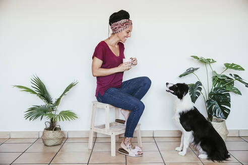 woman having fun with her bodrder collie dog at home, Madri, Spain - EBBF02228