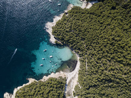 Aerial View of Menorca in summer - DAMF00655
