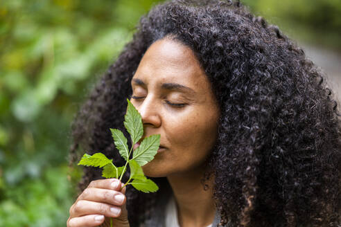 Mid adult woman with eyes closed smelling leaf in forest - AKLF00013