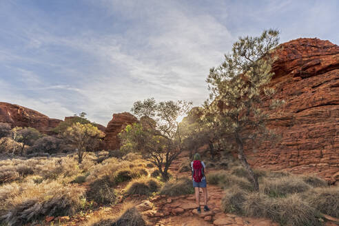 Female hiker standing in Kings Canyon - FOF12015