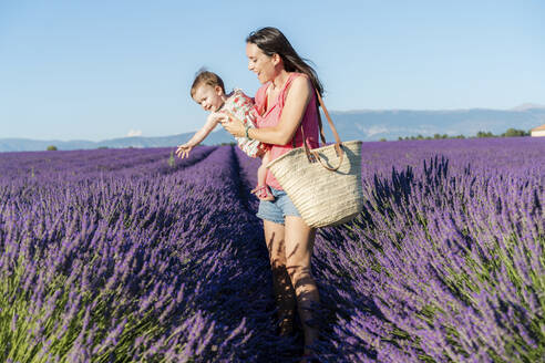 Mother carrying baby daughter in vast lavender field during summer - GEMF04694