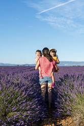Mother holding two little sisters in a lavender field at afternoon in Valensole, Provence, France - GEMF04697