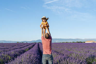 Father holding aloft baby daughter in vast lavender field during summer - GEMF04700