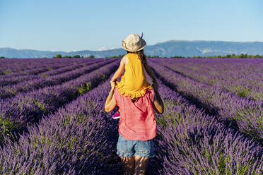 Little girl on shoulders of happy mother in a lavender field at afternoon in Valensole, Provence, France - GEMF04706