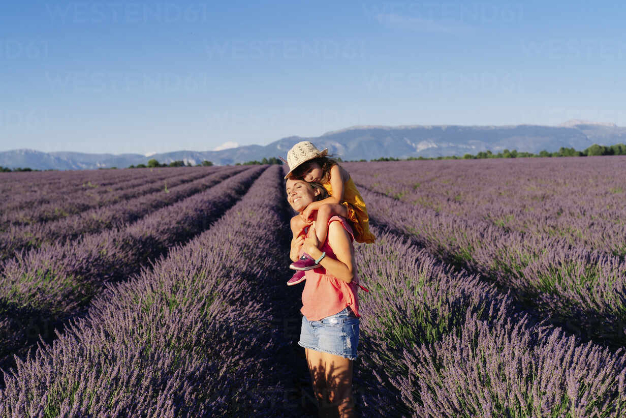Little girl on shoulders of happy mother in a lavender field at afternoon in Valensole, Provence, France - GEMF04712 - Gemma Ferrando/Westend61