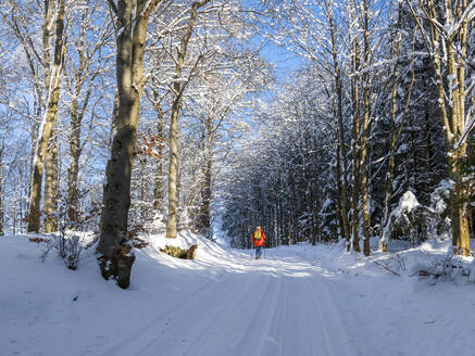 Germany, Black Forest, Freiamt, Person hiking on Schillinger Berg in winter - LAF02687