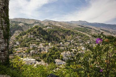 Old town amidst trees at Mali I Gjere, Gjirokaster, Albania - MAMF01639