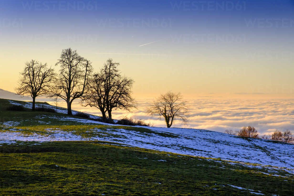 Austria, Vorarlberg, Pfaender mountain at sunset - LBF03382 - Lisa und Wilfried Bahnmüller/Westend61