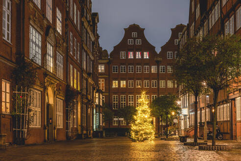 Germany, Hamburg, Christmas Tree on Peterstrasse in Composers Quarter - KEBF01788